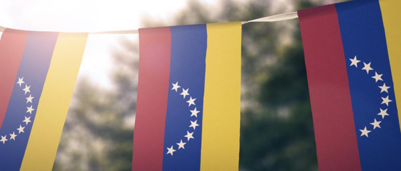 Día Nacional de Venezuela