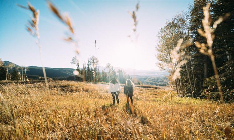 Two people walking through field