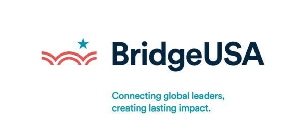bridge usa logo