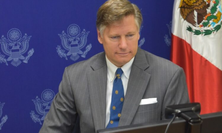 Ambassador Landau appears to be staring into a TV screen or computer monitor.