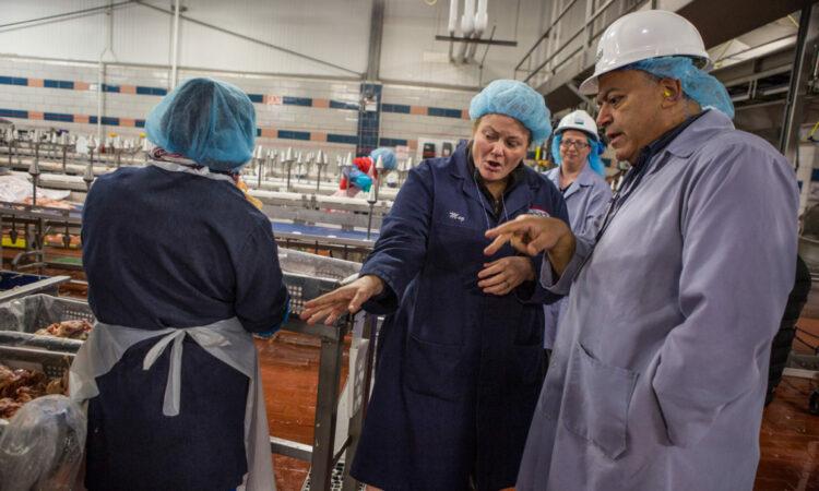 Margaret Roles, Qualitätssicherungsmanagerin bei Bell & Evans, erörtert mit Hany Sidrak, einem leitenden Angestellten des Lebensmittelsicherheits- und Kontrolldienstes, dem Hunderte auf Bundesebene beschäftigte Veterinärmediziner unterstellt sind, die Sicherheitsverfahren des hochmodernen Geflüg