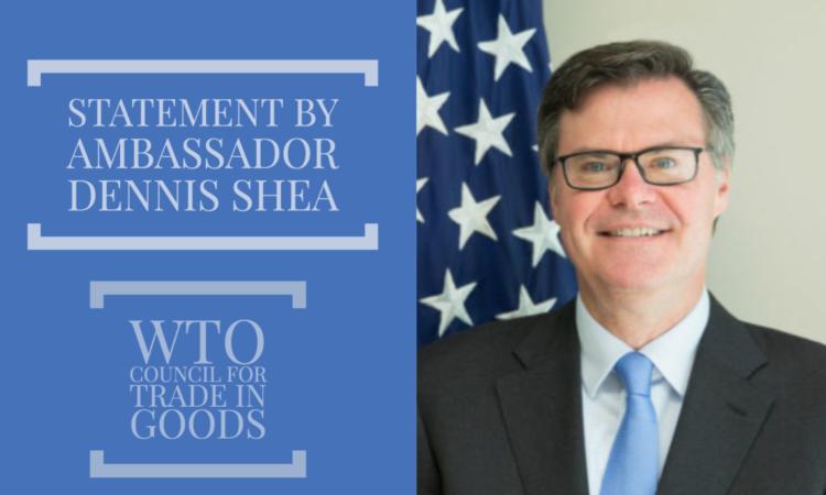 Ambassador Dennis Shea