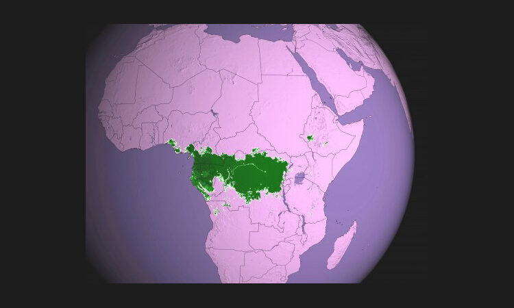 Map of Africa with rain forest area highlighted in green (NASA)