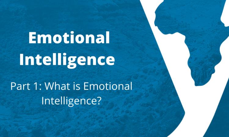 Emotional Intelligence Part 1: What Is Emotional Intelligence?