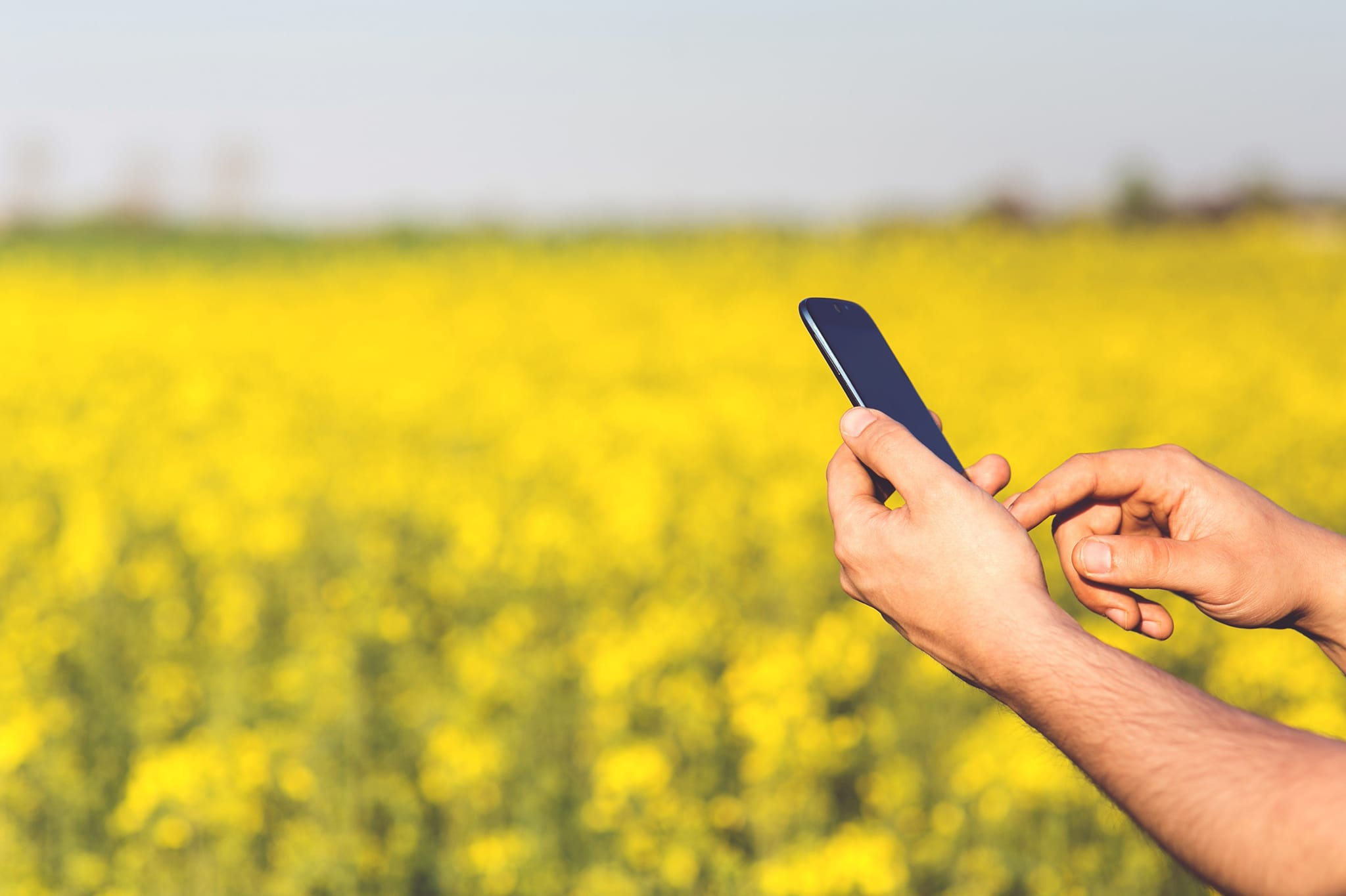 holding cell phone in field