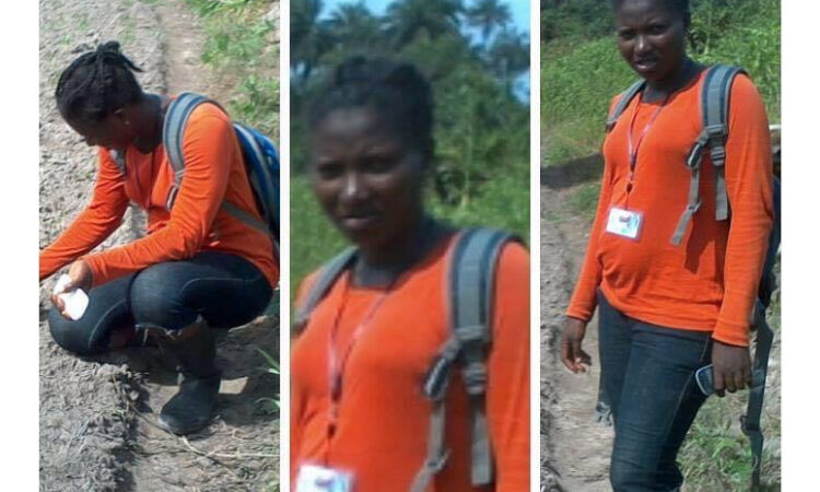 Three views of Esther Kromah in field (Courtesy of Esther Kromah)